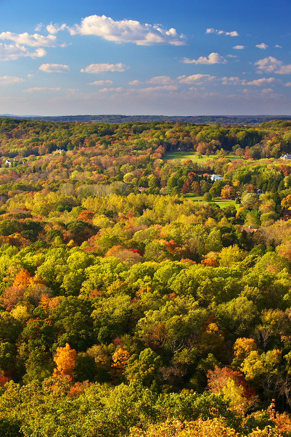 Fall Colors from Bowman's Hill Tower near Washington Crossing, PA