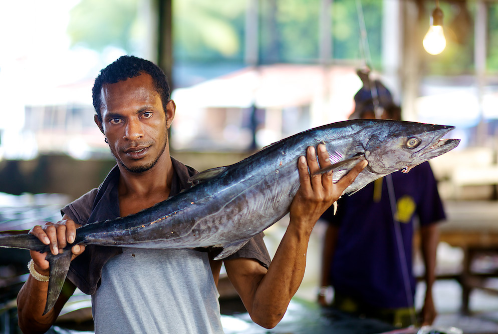 Wanna Buy a Big Fish? Fish Market in Serui, Papua, Indonesia