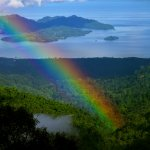 Never Never Land - Rainbow in the Rain Forest